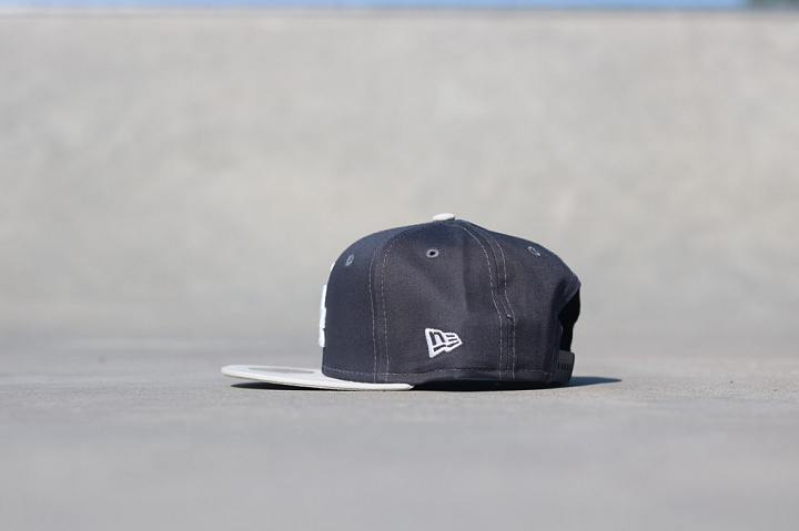 9fifty LA Dodgers Grey/Silver Child (1)